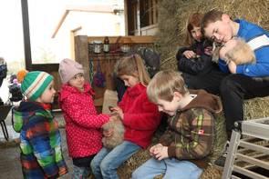 Viele Kinder streicheln Hasen