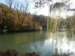 Der Schachtsee erinnert noch an den alten Schacht in Jagstfeld